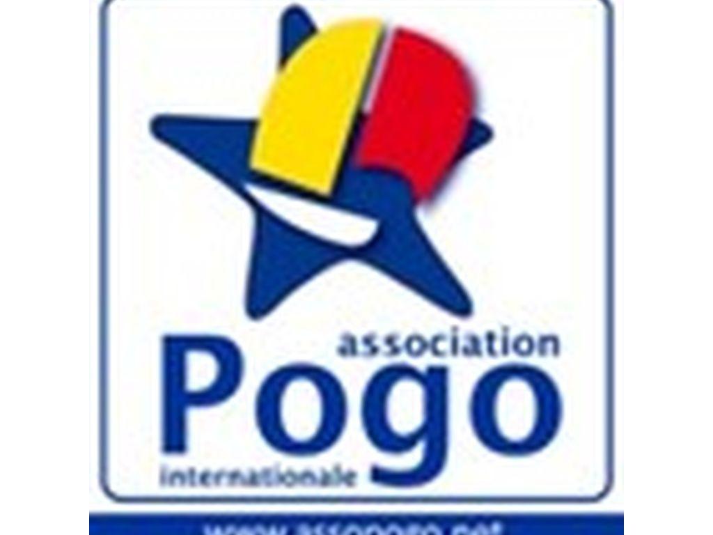 Stages proposés par l'AI POGO